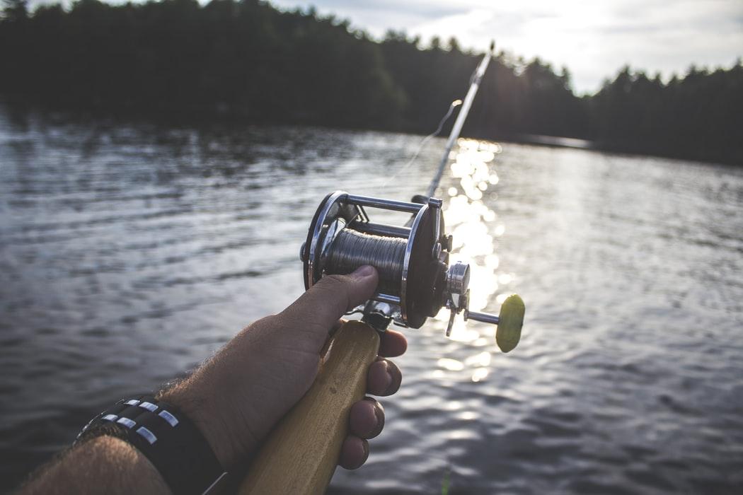Защо е по-добре да ловим риба в сладководни водоеми?